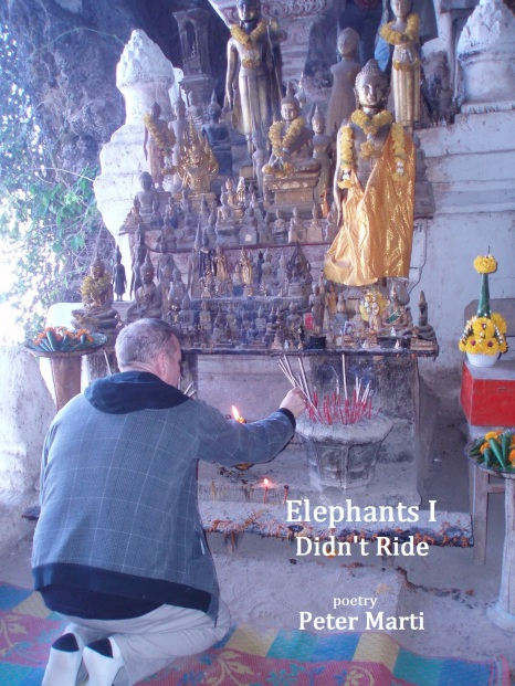 Elephants I Didn't Ride by Peter Marti. Published June 2012. 58 pages.